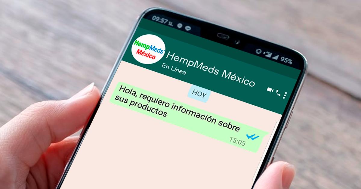 Whatsapp de contacto para comprar aceite de CBD