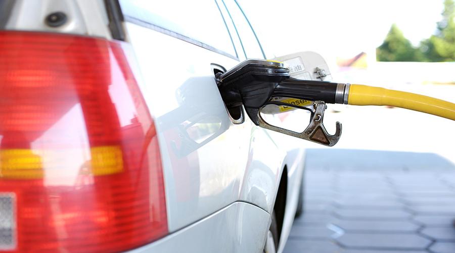 El cáñamo podría sustituir los combustibles fósiles